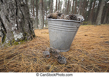 Pine cone bucket