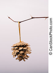 Pine cone in hand at the edge of a stick