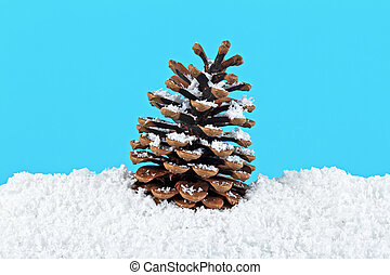 Pine cone in snow on blue background