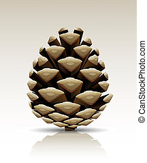 pine cone isolated - single pine tree cone isolated...