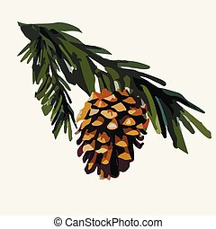 Pine cone on a branch. Vector illustration