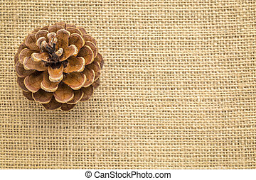 pine cone on burlap canvas