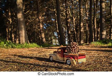 Pine Cone Pick up