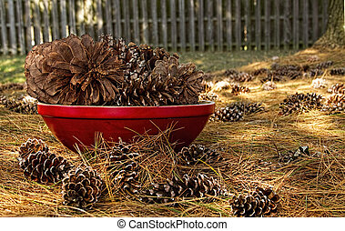 Pine Cones in Red Bowl