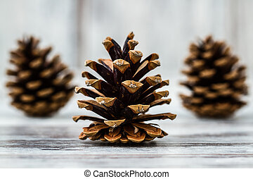 Pine Cones - Natural dry pine cones on wooden white table...