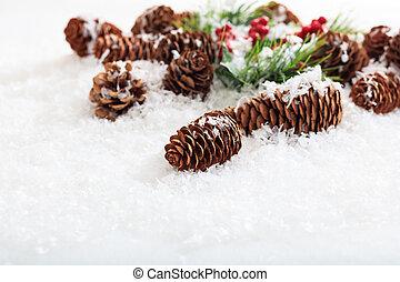 Pine cones on snow