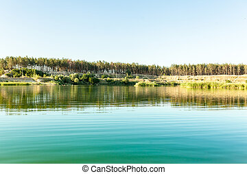 Pine forest on the sandy shore of a beautiful lake. Summer season