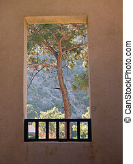pine in natural frame of window, fethie, turkey