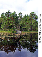 A calm lake after the rain mirroring the pine trees on the opposite shore. Photographed in Salo, South of Finland.