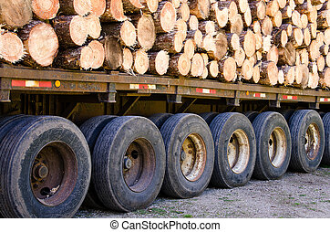 Pine logs stacked on logging truck.
