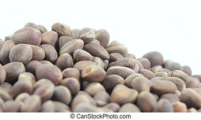 Pine nuts in bulks