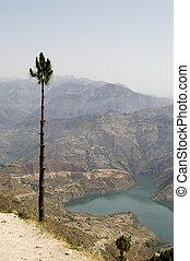 Pine over Ganga river - View at Ganga river and the ...