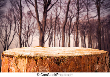 Pine stump background autumn forest