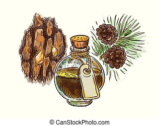 Pine tar in a bottle with branch and bark. Watercolor imitation with sketch.