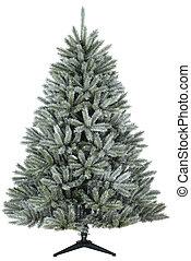 Pine tree alaskan