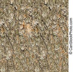 Pine tree bark seamless texture.