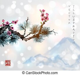Pine tree branch and sakura in blossom. Traditional oriental...