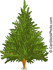 Pine Tree - Green Pine tree for your design