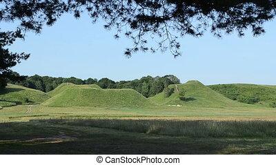 pine tree hill mound