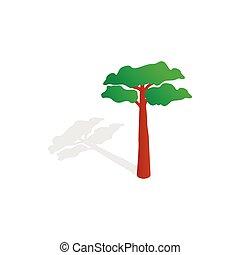 Pine tree icon, isometric 3d style