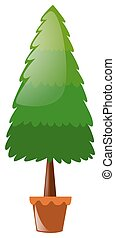 Pine tree in clay pot illustration