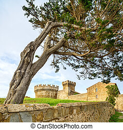 Pine tree in Populonia medieval village landmark, city walls and tower on background. Tuscany, Italy.