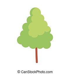 pine tree plant isolated icon