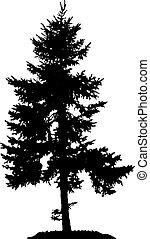 Pine Tree Silhouette - Illustration with pine tree...
