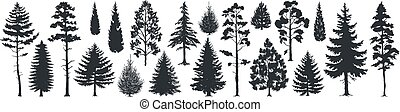 Pine tree silhouettes. Evergreen forest firs and spruces black shapes, wild nature trees templates. Vector woodland trees