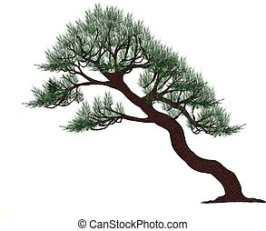 Pine tree vector on white background. Pine tree by hand ...