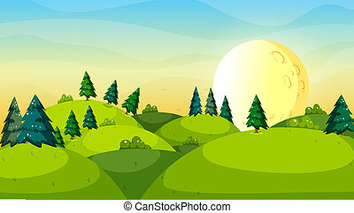 Pine trees above the hills - Illustration of the pine trees ...
