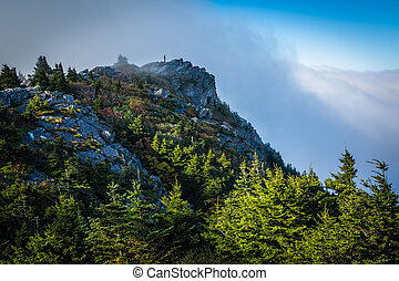 Pine trees and rocky summit, at Grandfather Mountain, North...