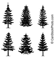 Collection of 6 pine trees on isolated white background. EPS file available.