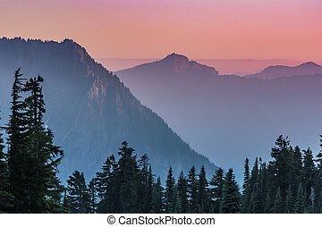 Pine Trees in front of Hazy Purple Sunset