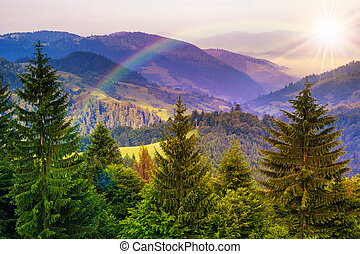 pine trees near valley in mountains and autumn forest on...