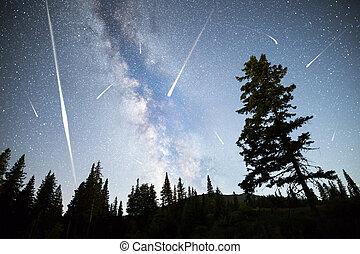 Pine trees silhouette Milky Way falling stars