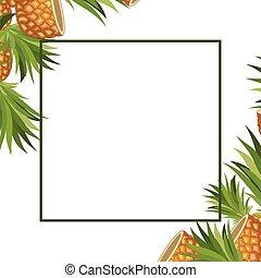 pineapple fresh fruit frame