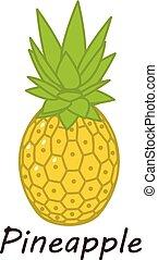 Pineapple icon, isometric style