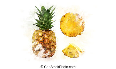 Pineapple Illustration for the overlay - A beautiful...