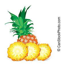 Pineapple (illustration) - Pineapple With Slices (XXL jpeg ...