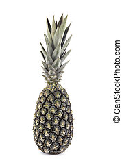 delicious pineapple in front of white background