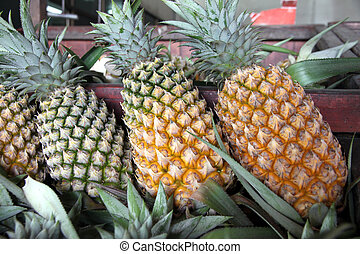 Pineapple in the market.
