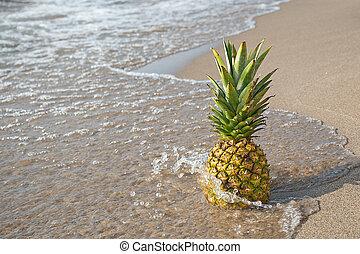 pineapple on beach