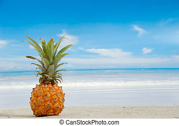 Pineapple on exotic beach