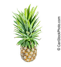 Pineapple on isolated white background