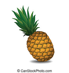 pineapple on white background - vector illustration