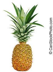 Pineapple - Single pineapple fruit isolated on white ...
