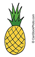 pineapple vector hand drawn icon isolated on background
