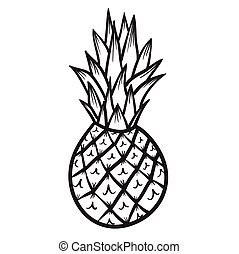 Pineapple vector hand drawn illustration