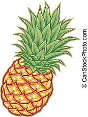 vector illustration ripe orange pineapple with green leaves